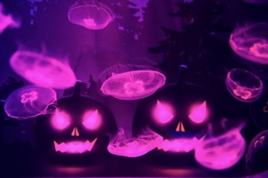 sumida_aquarium